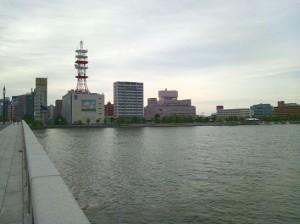 かれこれ何十回とわたった新潟市の万代橋。川向こうのピンクの建物が、第1回川柳マガジン川柳大会を開催した新潟グランドホテルです。